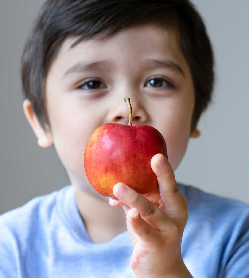 servicio comedor escolar - justo serveis