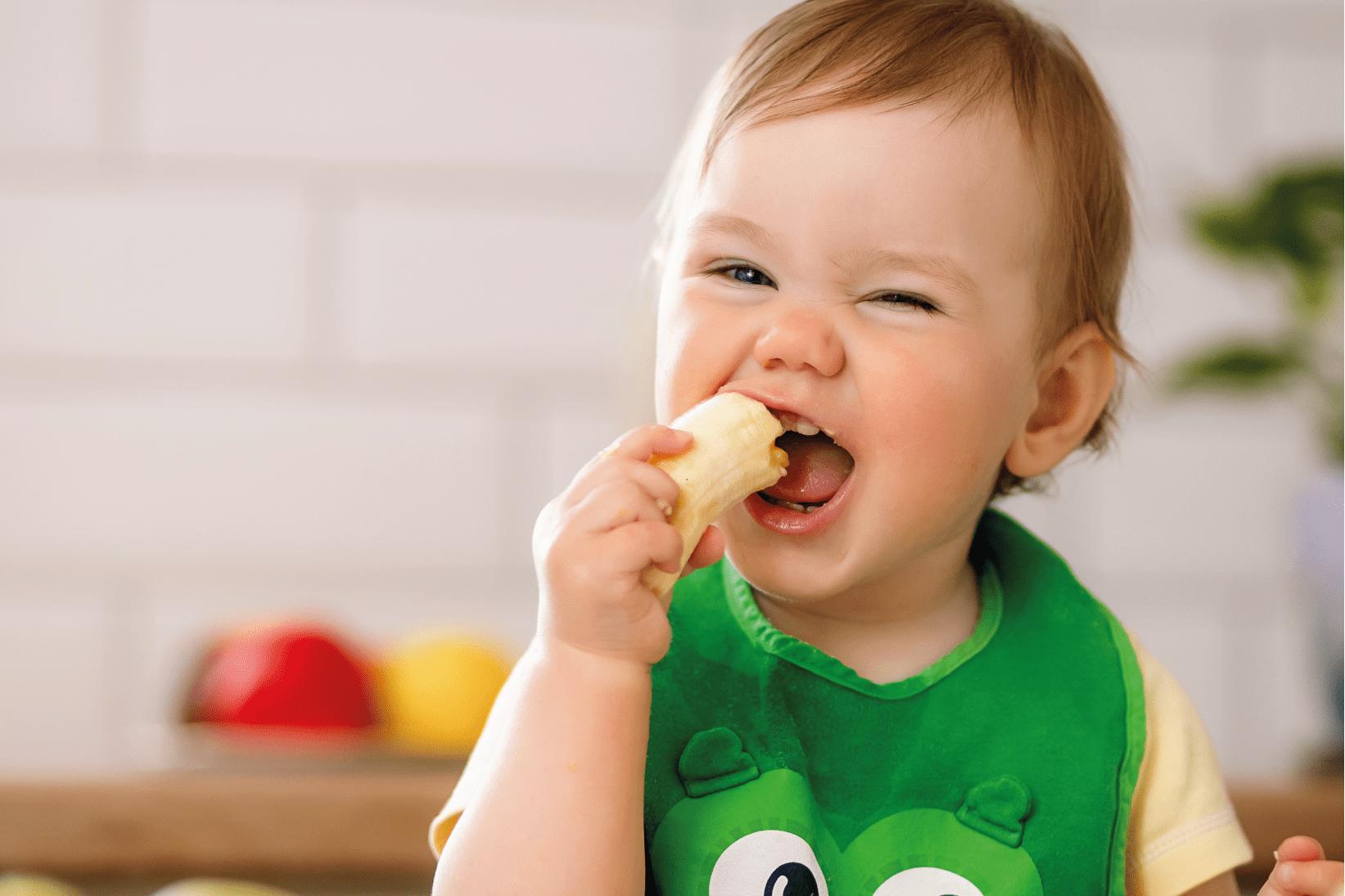 Guia De Nutrició Infantil